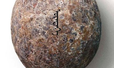 Huevo de dinosaurio Póster