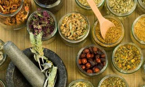 Obat Masuk Angin Tradisional dan Alami Paling Ampuh