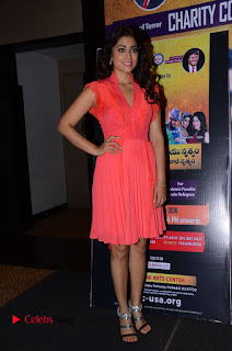 Actress Shriya Saran Pictures in Pink Short Dress at Republic Hindu Coalition (RHC) Charity Concert Press Meet  0127