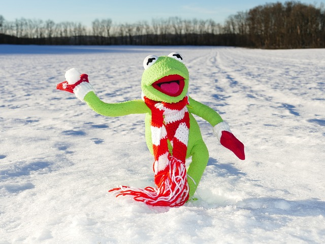 photo of Kermit the Frog throwing a snowball