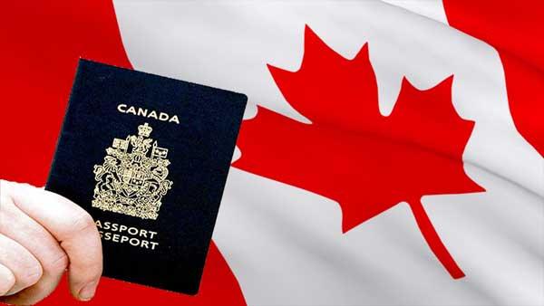 الهجرة السريعة إلى كندا بدون عقد عمل هنا الشروط والخطوات