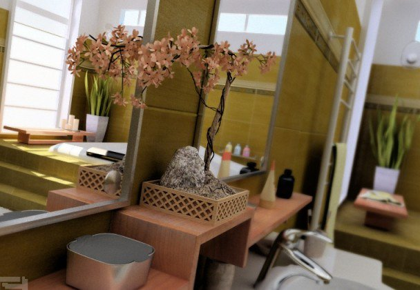 Bonsai in bathrooms