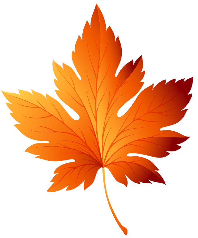 Autumn leaf color, autumn leaves, leaf, maple Leaf png by: pngkh.com