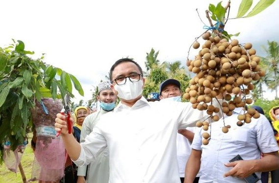 Banyuwangi dorong warga manfaatkan pekarangan untuk ketahanan pangan