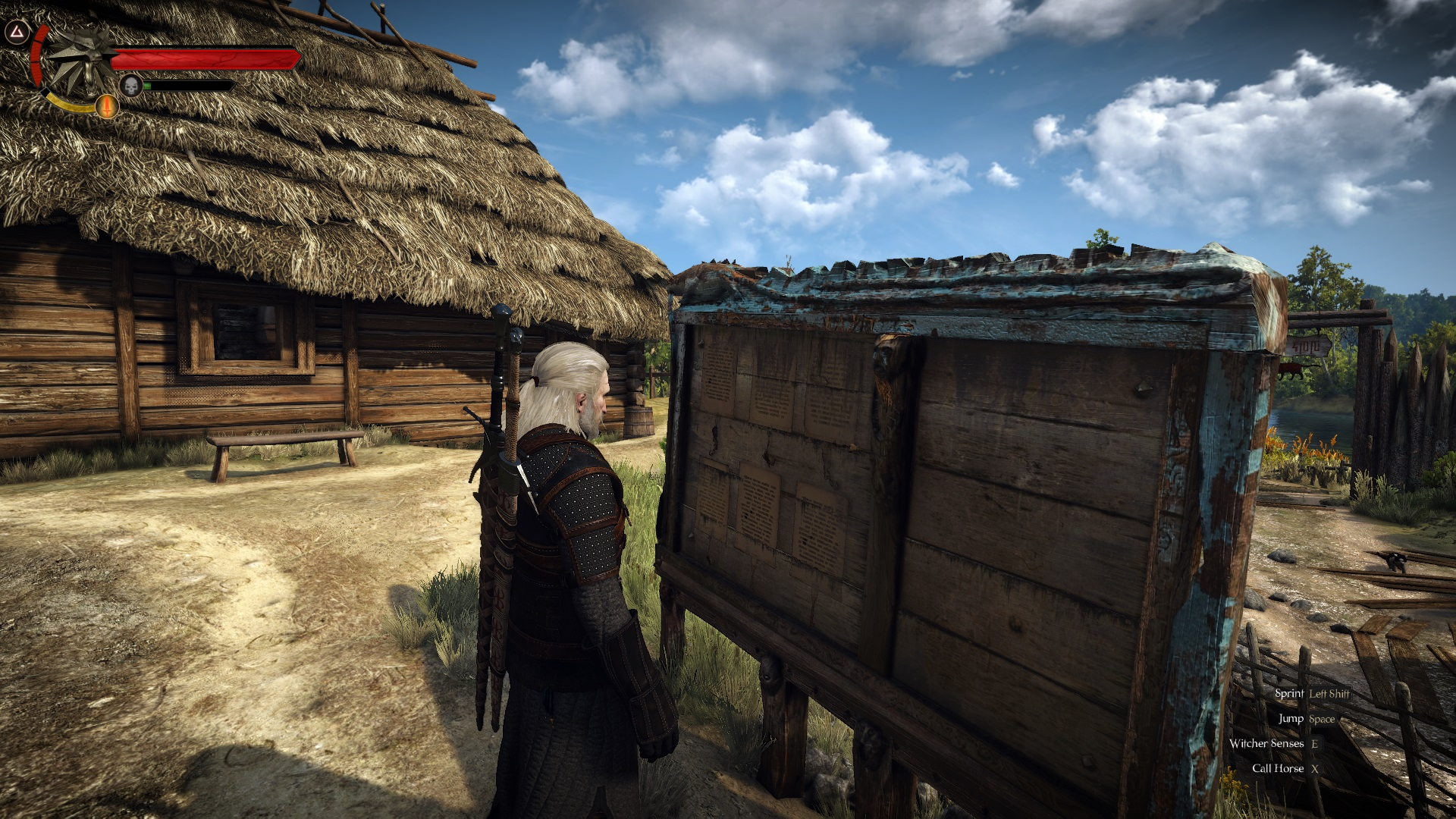 The Witcher 3 - Enhanced Edition