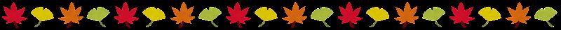 line_autumn2.png (800×44)