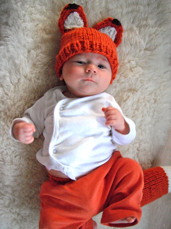 Honey Nutbrown s  Knitting! Woodland Fox Baby 06fa64eeab6