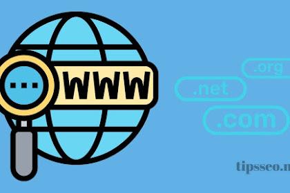 5 Tips Memilih Domain Yang Tepat untuk Website Tampak Profesional