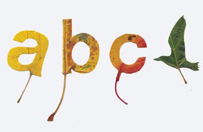 Tipografia y figuras con hojas de arboles.