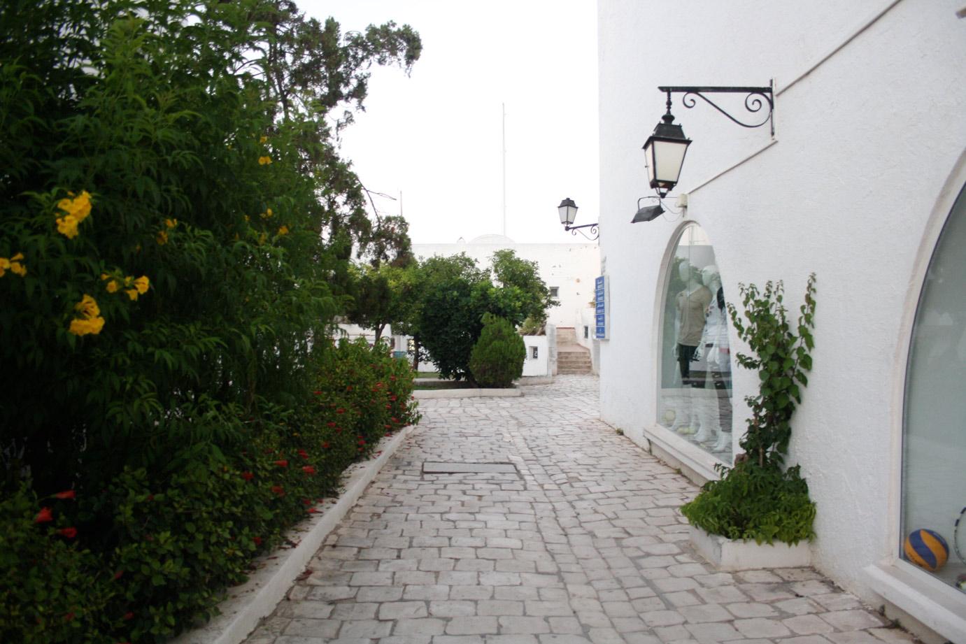 TUNISIA PHOTO DIARY III. 7