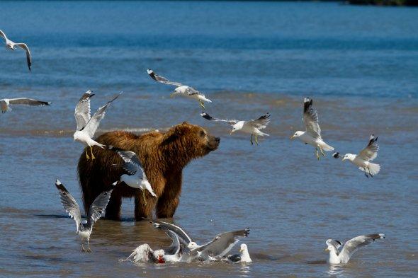 Rodislav Driben 500px fotografia viagens natureza cultura