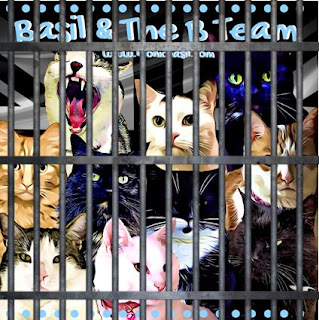 How To Get Out Of FaceBook Jail ©BionicBasil® Meowing on Mondays - FB Jail Cell