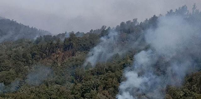 Bencana Asap Belum Berakhir, Udara Bandara Mahmud Badaruddin Palembang Berstatus Bahaya