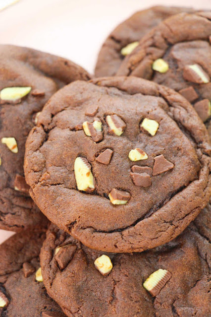 chocolate cookie with mint chocolate chips on top