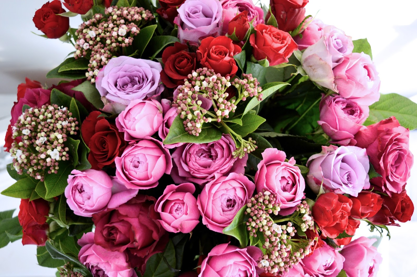 Valentines Day Blooms Cliche Or A Grand Gesture Dalry Rose Blog