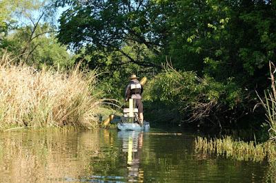 Pat Kellner, Texas Freshwater Fly Fishing, TFFF, Texas Fly Fishing, Fly Fishing Texas, Freshwater Fly Fishing, Warm Water Fly Fishing,  Colorado River, Fly Fishing Austin Texas, Fly Fishing Austin, Austin Fly Fishing