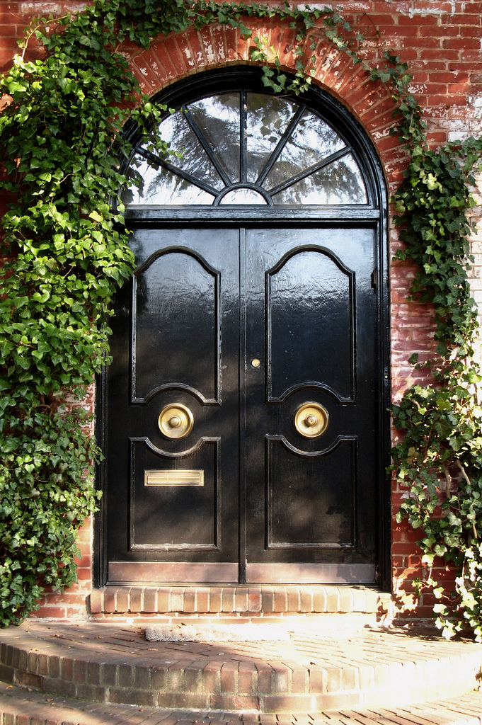 design delite: shiny front door
