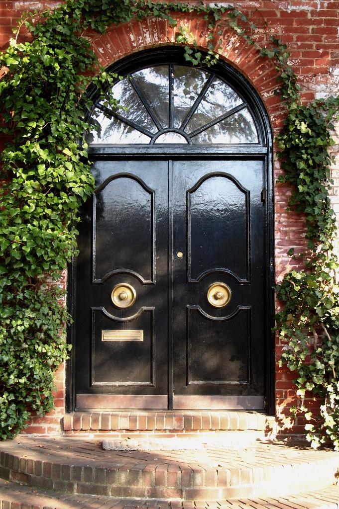 design delite shiny front door. Black Bedroom Furniture Sets. Home Design Ideas