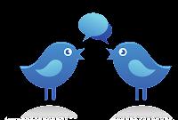 twitter oiseaux