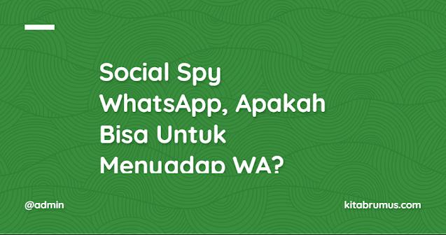 Social Spy WhatsApp, Apakah Bisa Untuk Menyadap WA?