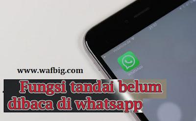 Apa Fungsi Tandai Belum Dibaca di WA Atau Whatsapp