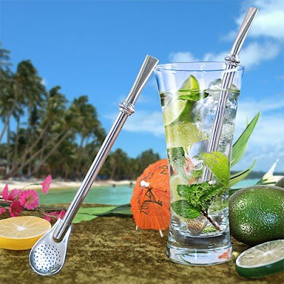 Stainless Steel Straw with Filter