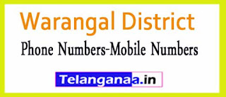 Kodakandla Mandal Sarpanch Upa-Sarpanch Mobile Nembers List Warangal District in Telangana