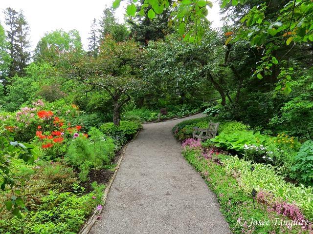 Fen tre sur mes photos le jardin des m tis for Jardin google translate