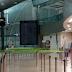 Las aerolíneas advierten de que hay más de 900.000 empleos en riesgo en España