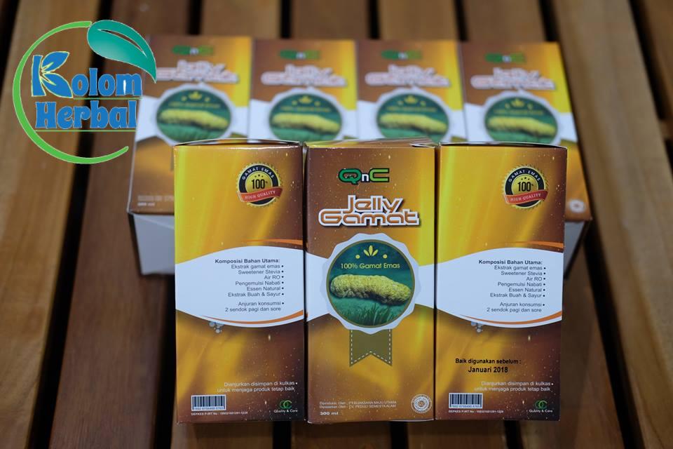 Obat Herbal Penyakit Gagal Ginjal