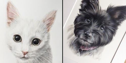 00-Zoe-Fitchet-Pet-Portraits-Cats-and-Dogs-Drawings-www-designstack-co