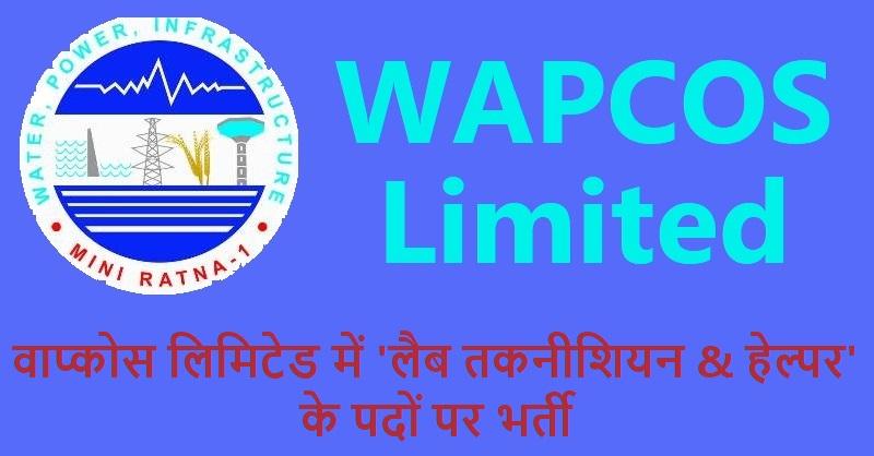 WAPCOS jobs 2019