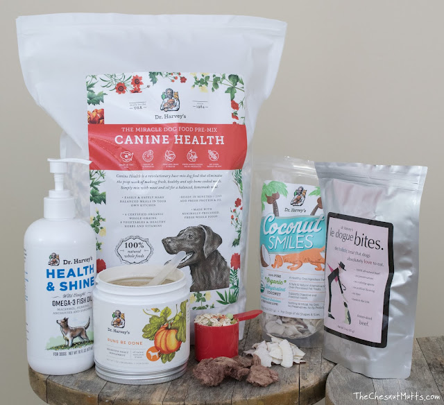 Dr. Harvey's premium holistic dog food, dog treats, and supplements