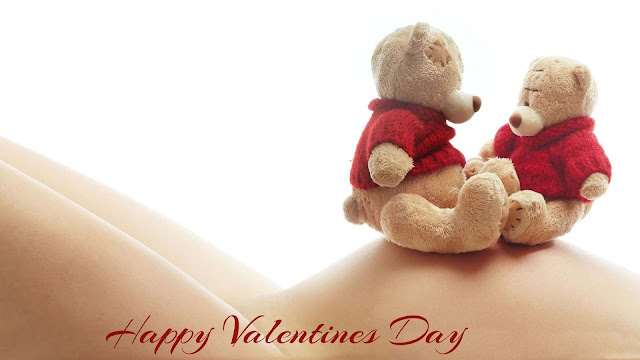 happy valentines teddy day image