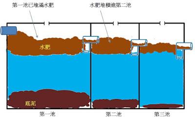 化糞池第二槽堆積