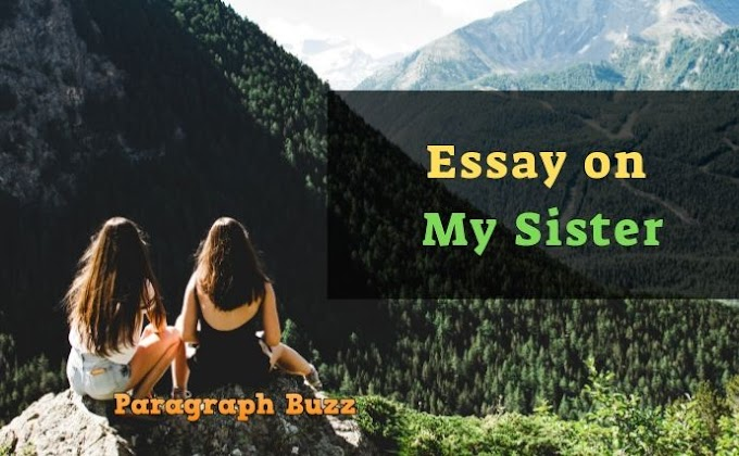 My Sister Essay for All Class Students