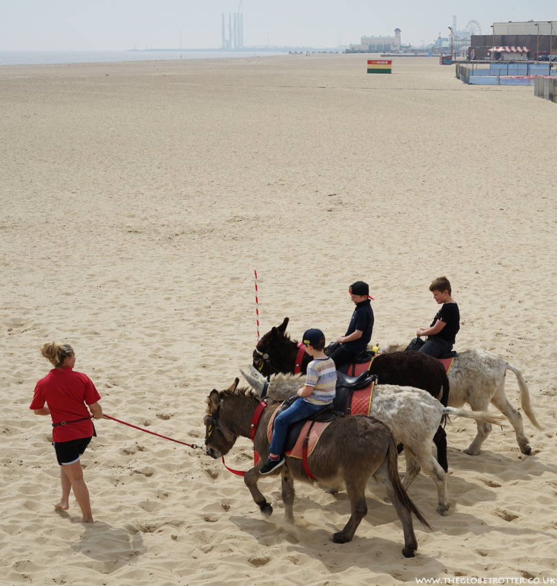 Donkey Ride on the beach in Great Yarmouth