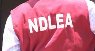 NEWS: NDLEA Debunks Video-Claim Of Drugs And Arms Seizure In Benin