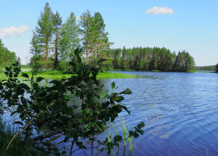 mökkiranta Timovaarassa