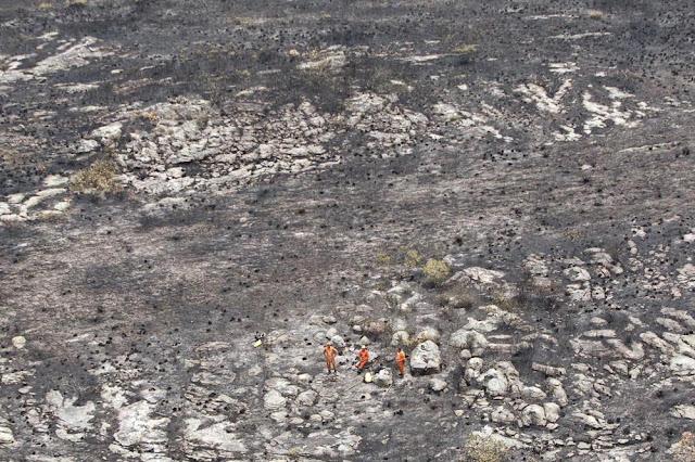 Área queimada em incêndio na Chapada Diamantina, na Bahia (Foto: Paula Fróes/GOVBA)