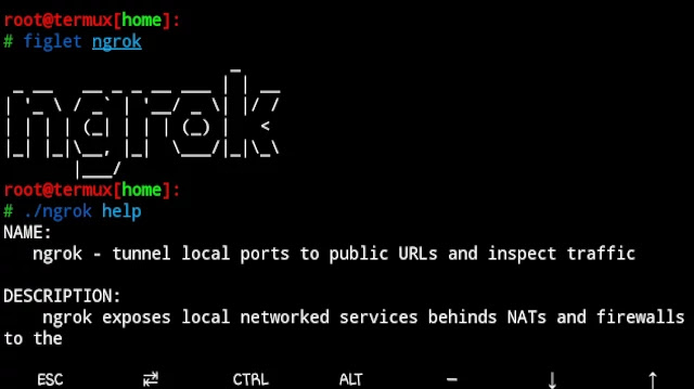 how-to-install-ngrok-in-termux