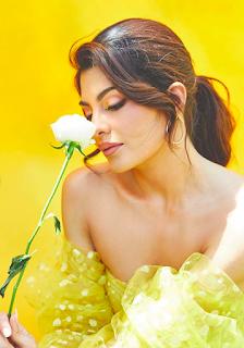 Jacqueline-Fernandez-image