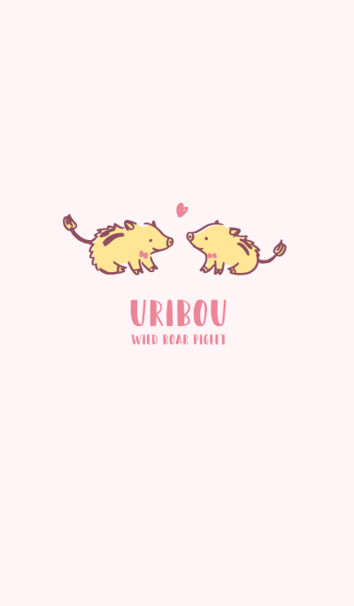 URIBOU - WILD BOAR PIGLET *HAPPY
