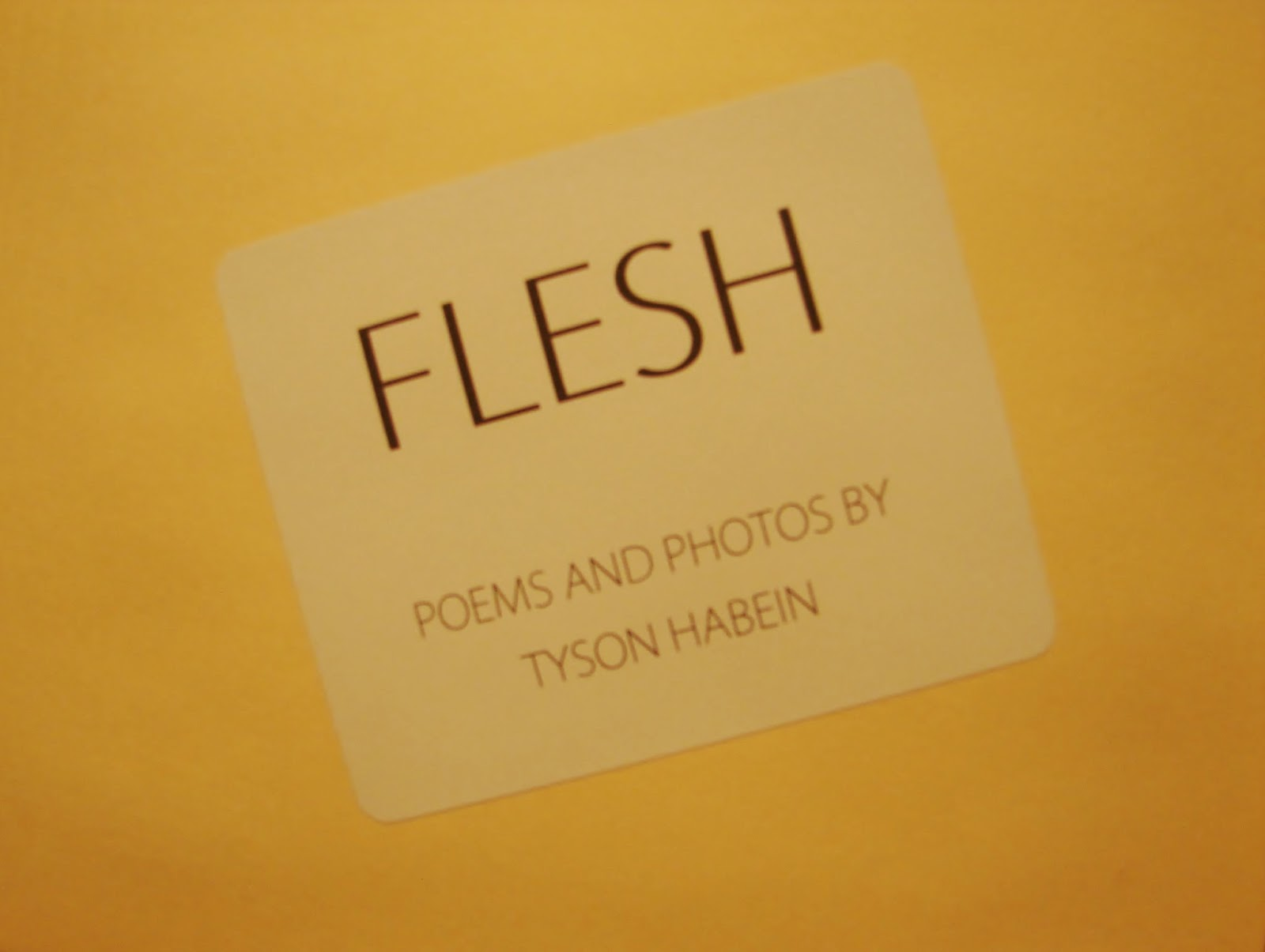 Flesh: Poems and Photos by Tyson Habein (cover)
