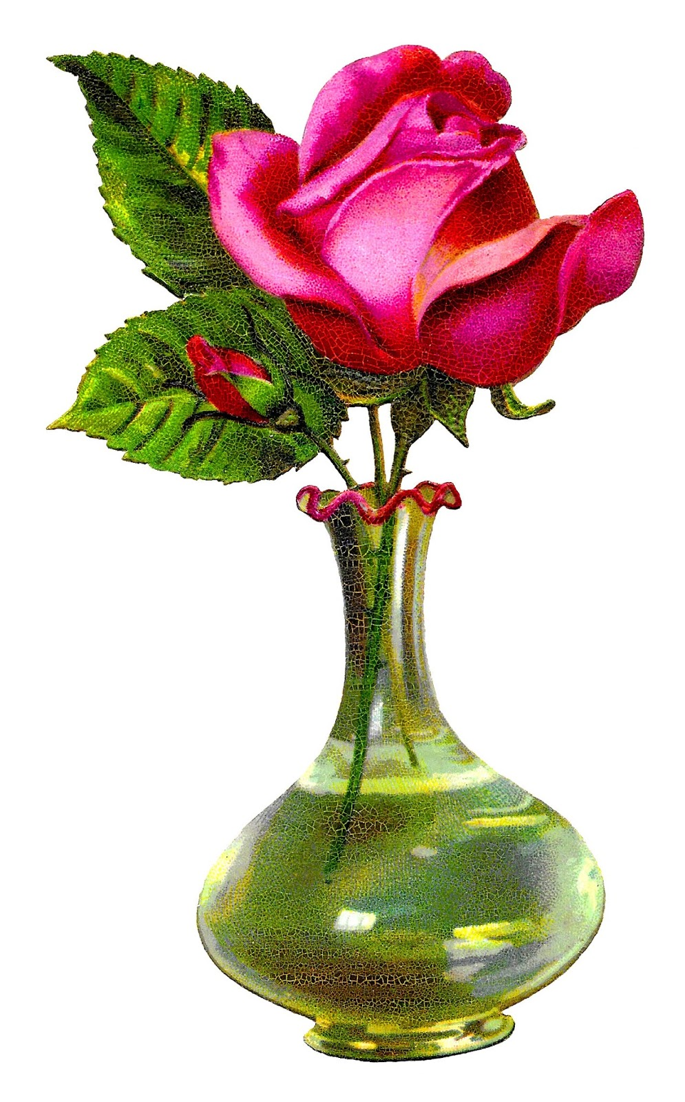 Antique Images Pink Rose Flower Glass Vase Shabby Chic Floral
