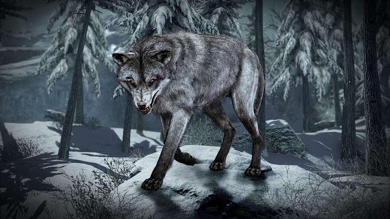 O Lobo e o Alfaiate