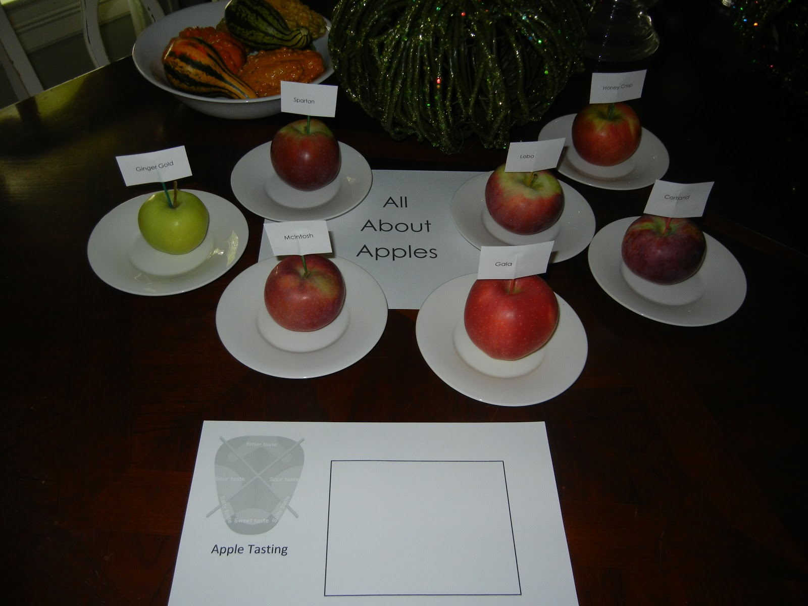 Making Montessori Ours Apple Tasting Activity