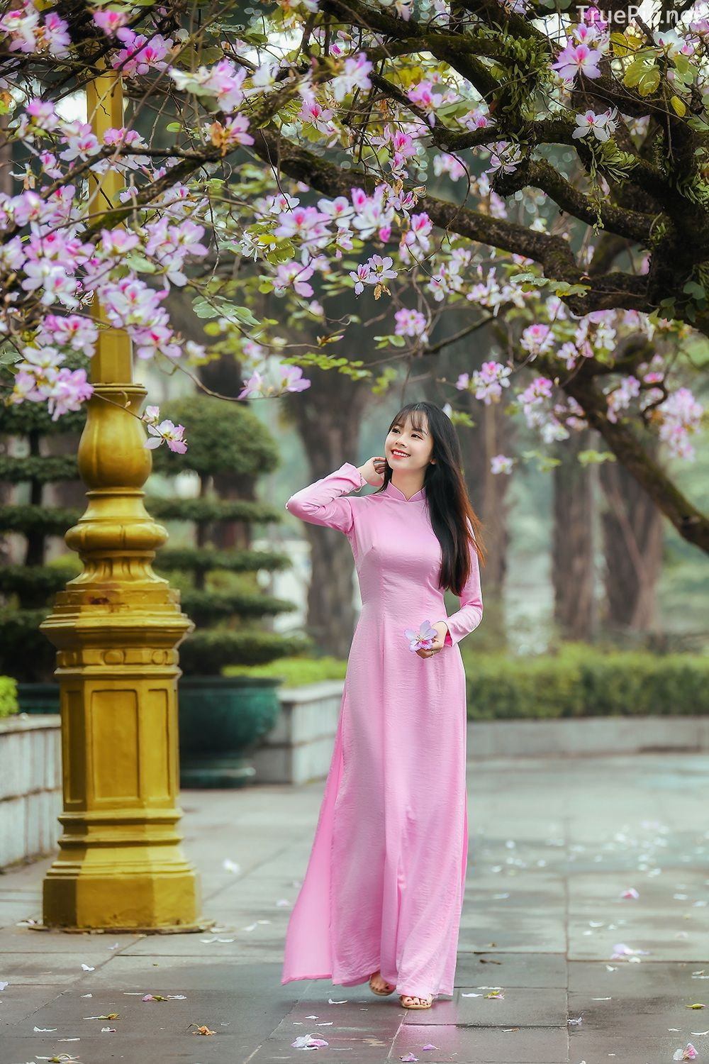 Dreamy purple of Ao Dai - Gentle and Soft of beautiful girls - Vietnamese traditional dress