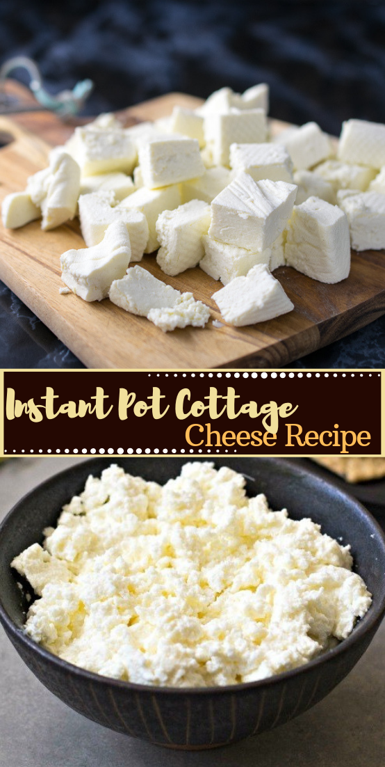 Instant Pot Cottage Cheese Recipe #desserts #cakerecipe #chocolate #fingerfood #easy