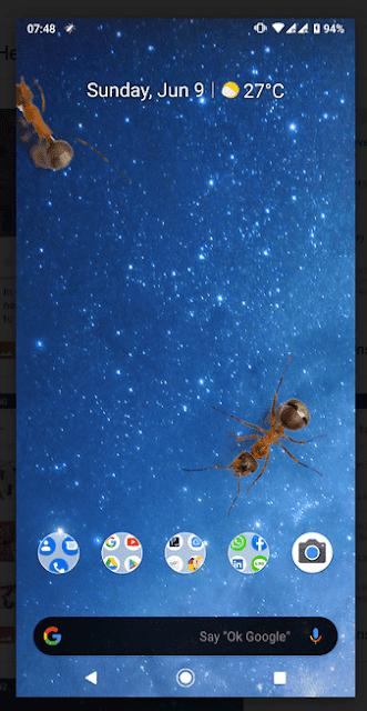 Aplikasi Semut di Layar HP Android